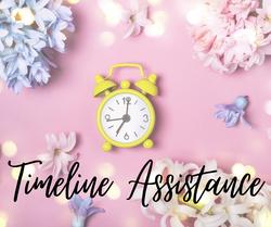 Timeline Assistance (1)