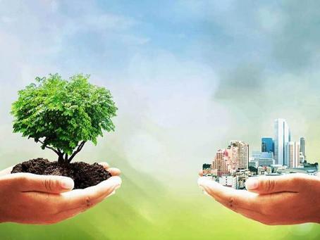 Проблемы формирования экологической культуры устойчивого развития