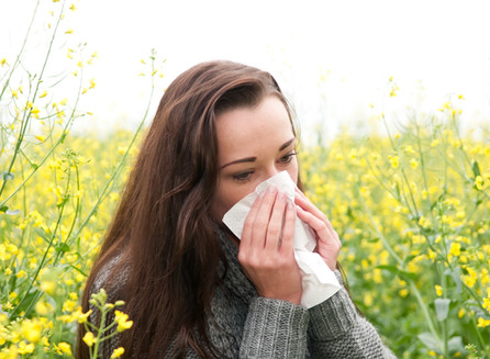 SPRING IS COMING and so is the HAY FEVER season.