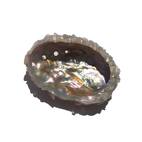 MOONSTONE MERMAID SHELL