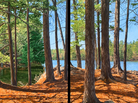 New Work: Shadows and Tall Trees