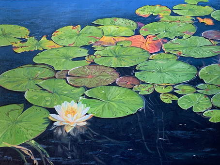 New Work: Lily Pads