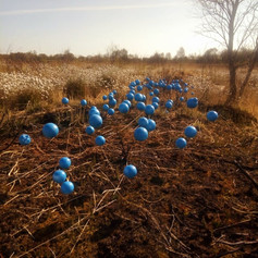 Art Trail on the Peat Bogs of County Tyrone
