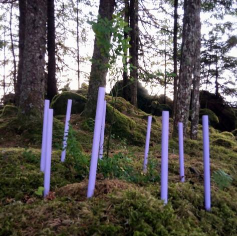 Predator Fence series 2
