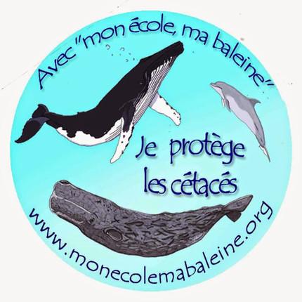 Logo de Mon Ecole Ma Baleine