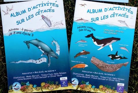 Illustrations pour posters et albums