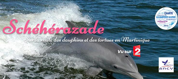 Schéhérazade Martinique Ecursions