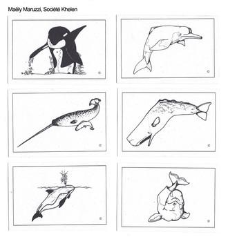 Exemples de cartes du MEMO
