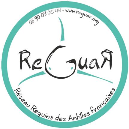 Réseau Guadeloupe Requin