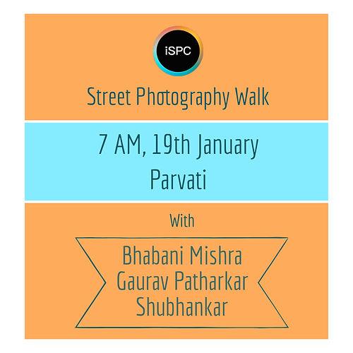 Parvati Web Banner.jpg