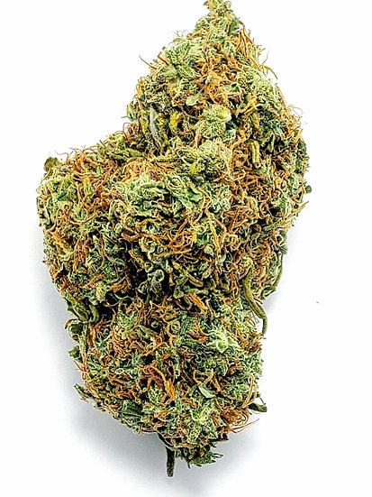 Red Congolese AAA + $160 Oz