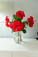 214_8001 bouquet fleur hibiscus.jpg