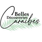 Logo Groupe BDC