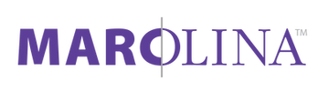 mdi-logo-2019.png