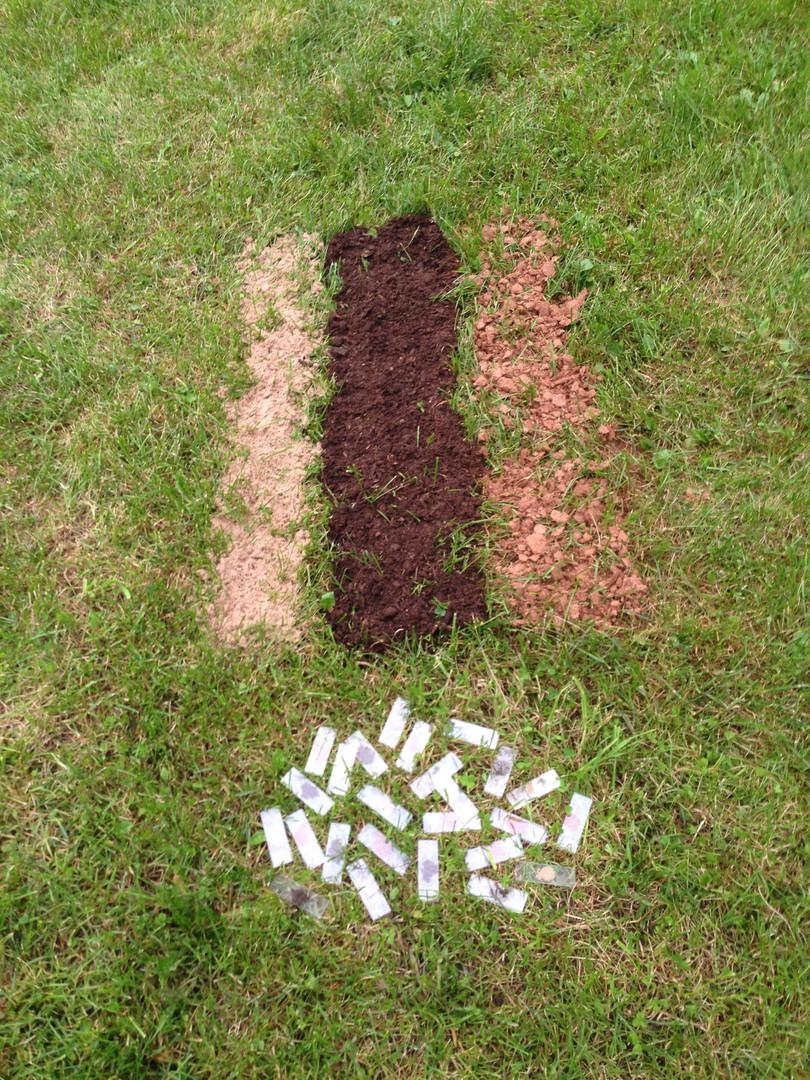 """""""Soil Flag"""", 2016"""