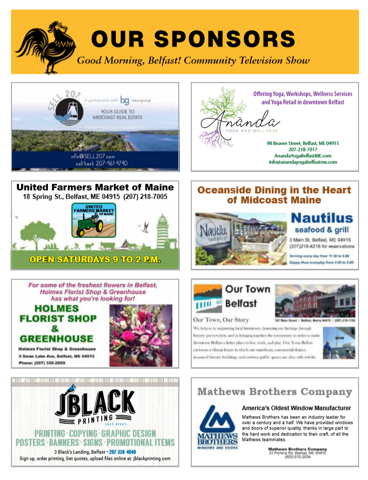 Our Sponsors on Village Voices.PNG