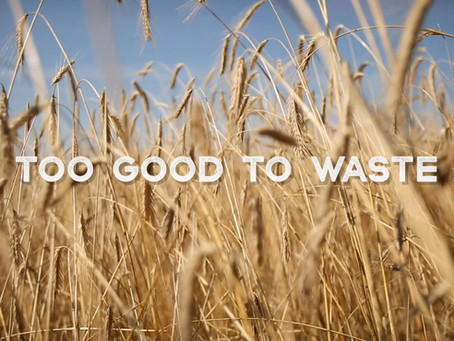 Too Good to Waste! - Trailer episode