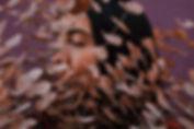 dried_Flowers.jpg
