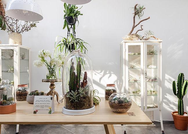 Flo-Atelie-Botanical-shop-brazil-05.jpg