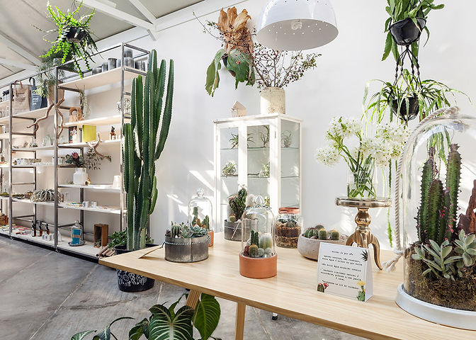 Flo-Atelie-Botanical-shop-brazil-04.jpg
