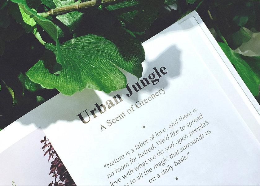 aesthetica_botanica_book2.jpg