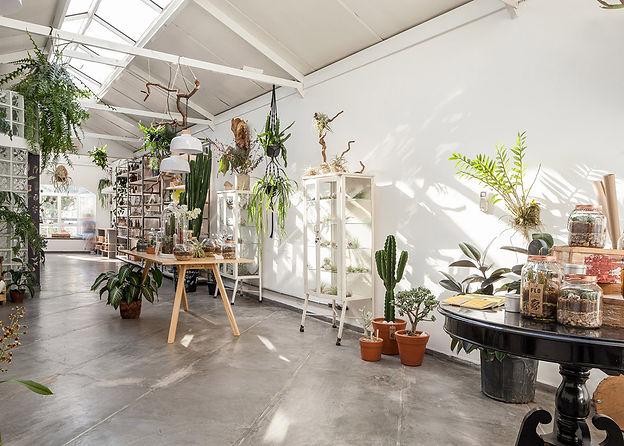 Flo-Atelie-Botanical-shop-03.jpg