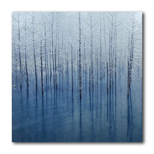 ART n° 183