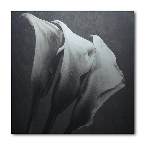 ART n° 030