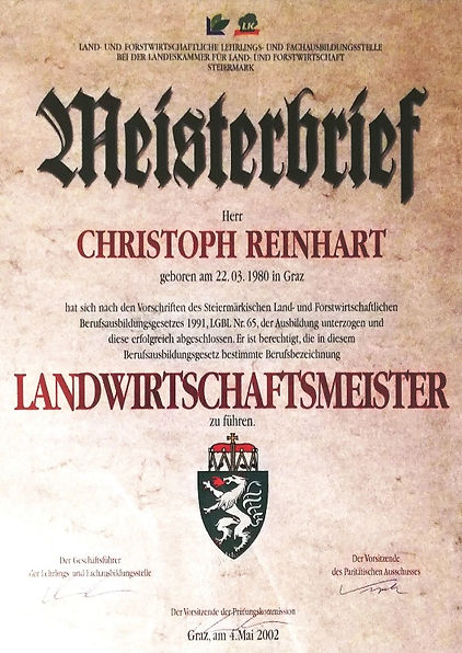 Meisterbrief_WEb.jpg