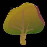 Baum_3-climatebloom.png