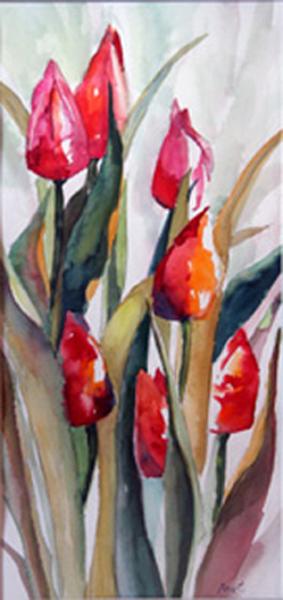 June Tulips