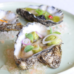 oesters_s