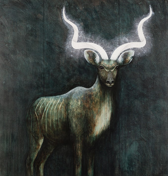 Illuminated Kudu