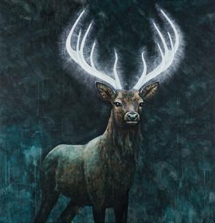 Illuminated Deer II