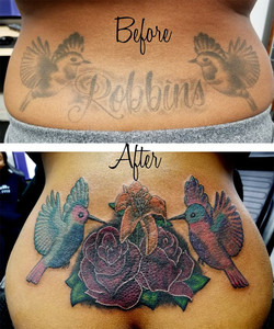 Robins Coverup