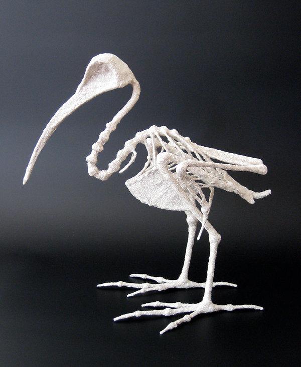 ibis1-hd.jpg