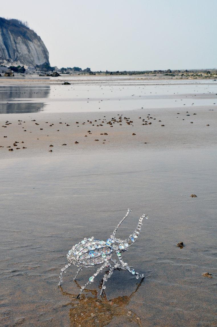 scarabee-beach-hd.jpg