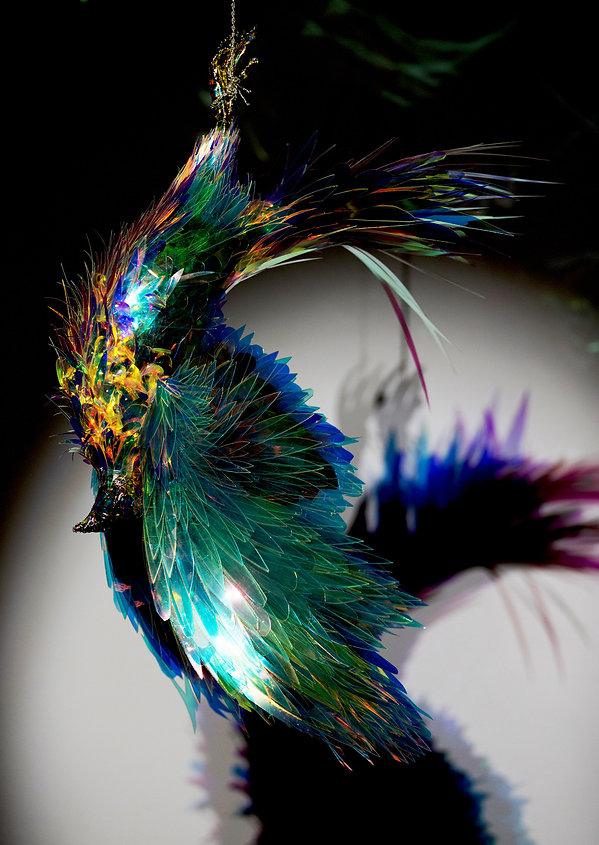 blue-bird-hd copie.jpg