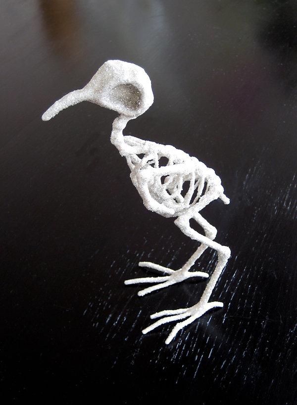 oiseau-hd.jpg