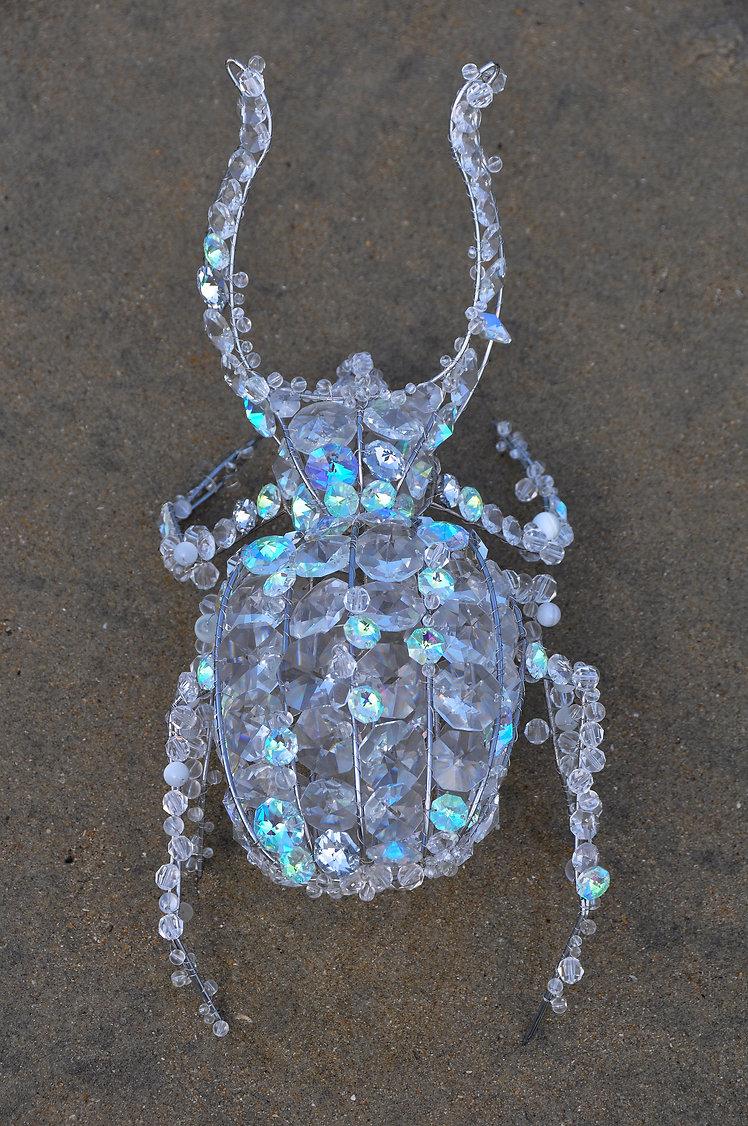 scarabee-hd.jpg