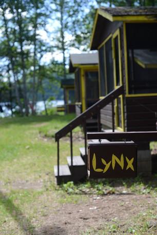 Cabins lynx.jpg