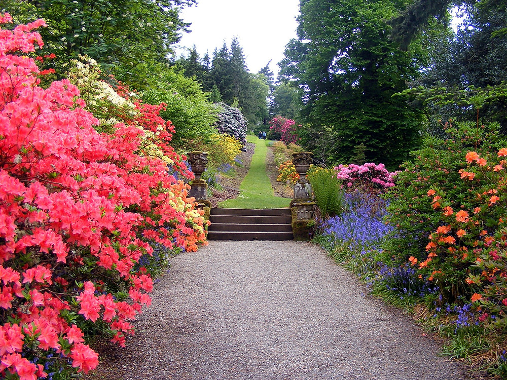 garden pathway, image by Michael Drummond, on Pixabay