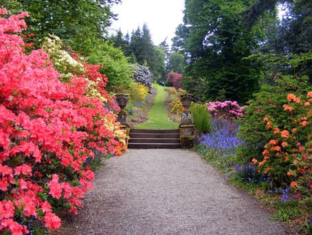 A Poem by Bruce Mundhenke:                                             The Garden