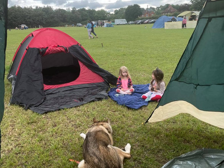 Camping Locally- With Dogs & Kids!