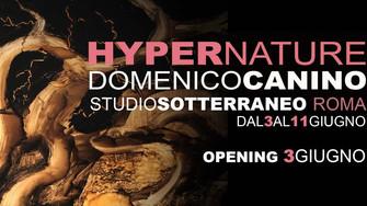 Domenico Canino – HYPERNATURE