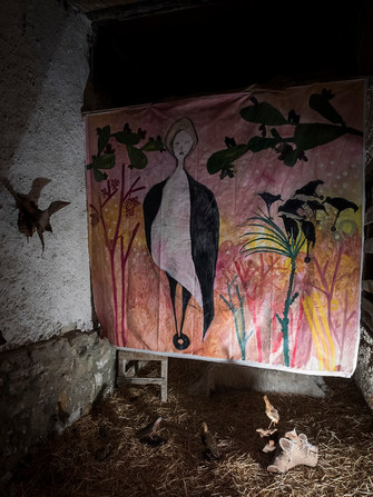 Arte - Mirta Vignatti - Lei sognava terre lontane