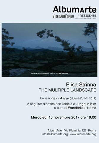 Elisa Strinna | THE MULTIPLE LANDSCAPE