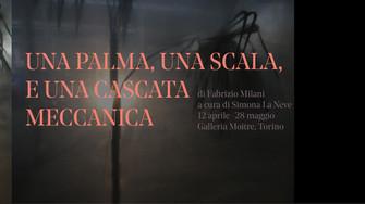 Una palma, una scala e una cascata meccanica di Fabrizio Milani