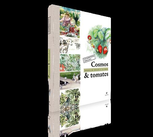 Cosmos & tomates