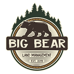 Big Bear Colorized.png